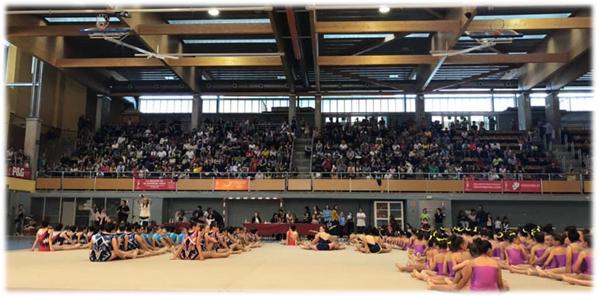 Nuestro Torneo Super-Escuelas: una gran fiesta de la gimnasia!